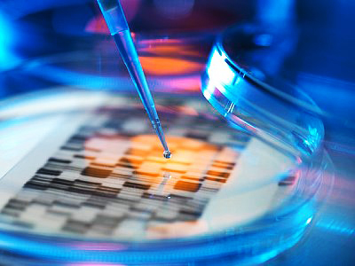 Caught in the Middle: Reducing the Uncertainty Created by the FDA and the Patent System for Genetic Diagnostic Test Makers