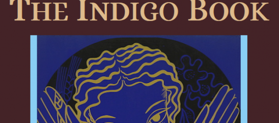 Interview: The Indigo Book: A Manual of Legal Citation