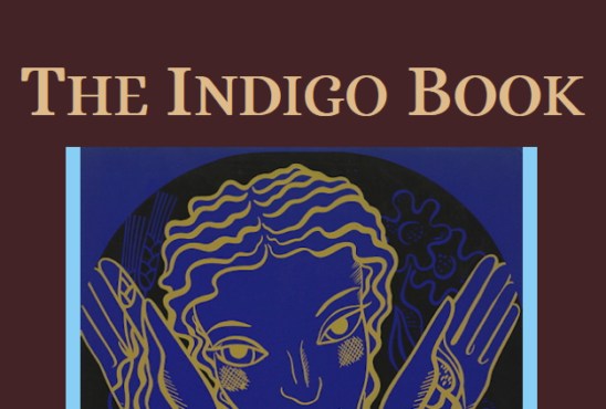 Interview: The Indigo Book: A Manual of Legal Citation
